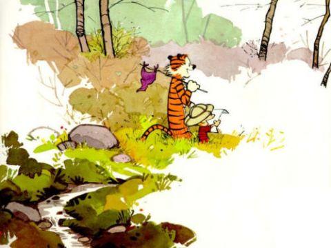 Calvin Hobbes vista