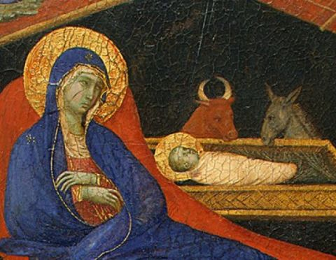 nativ oxass duccio