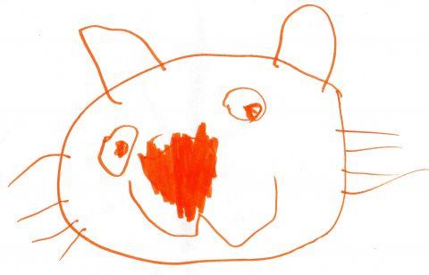 Big Orange Cat Head