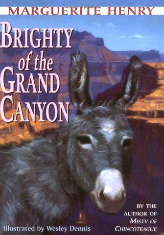 Brighty book cover