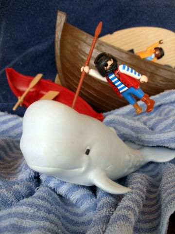 Moby Dick 1