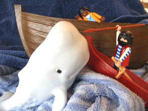 Moby Dick boat