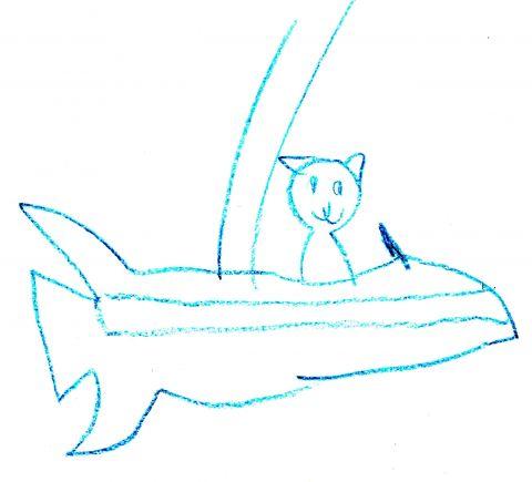 cat in rocket ride
