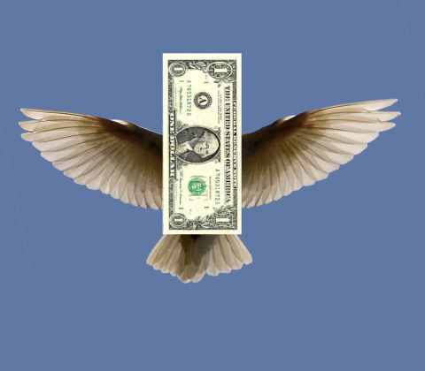 flying dollar