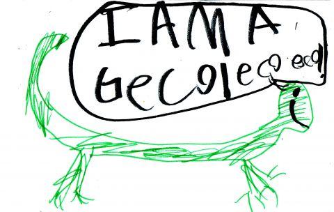 gecko echo